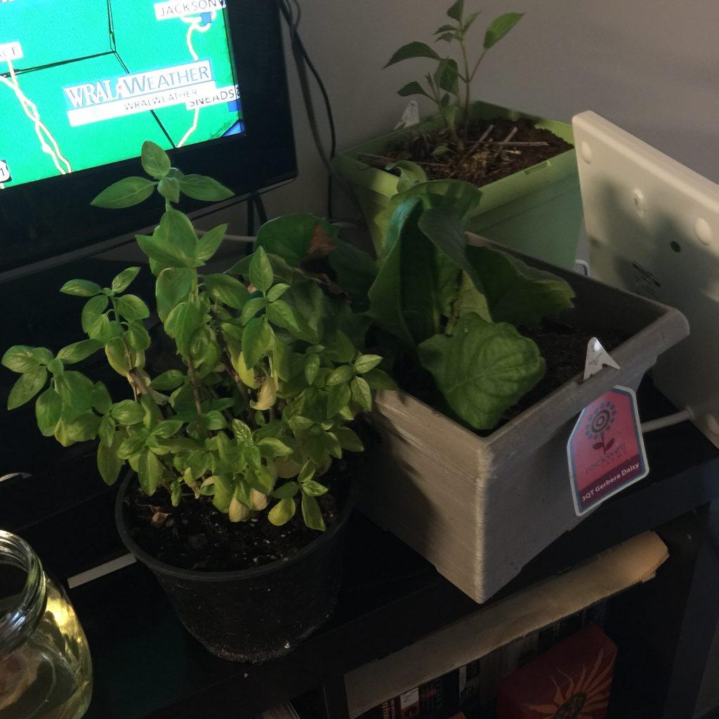 Plant rescue